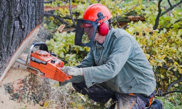 best-face-shield-for-woodworking