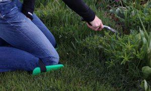 best gardening knee pads