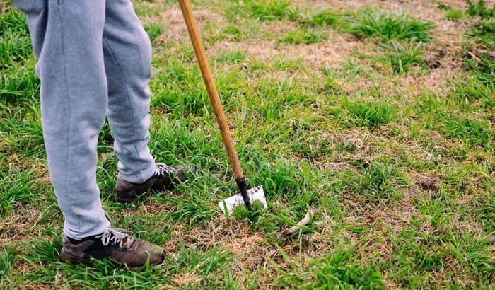 yard-work-shoes